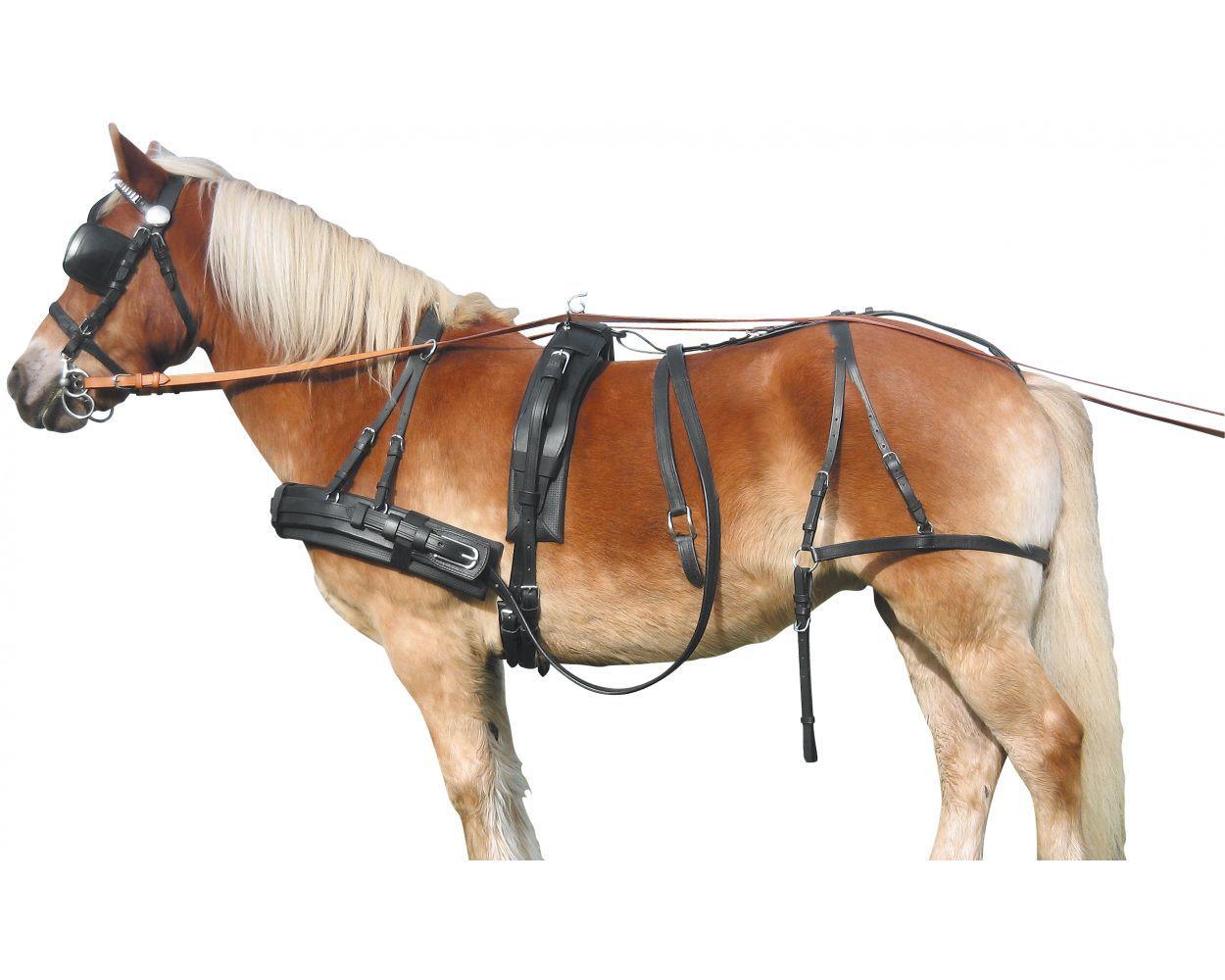 Упряжь / Упряжь / Для лошади / Галопом-из-Европы - конный магазин